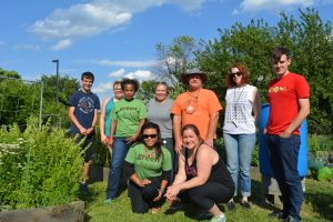 Green Teams gardening project