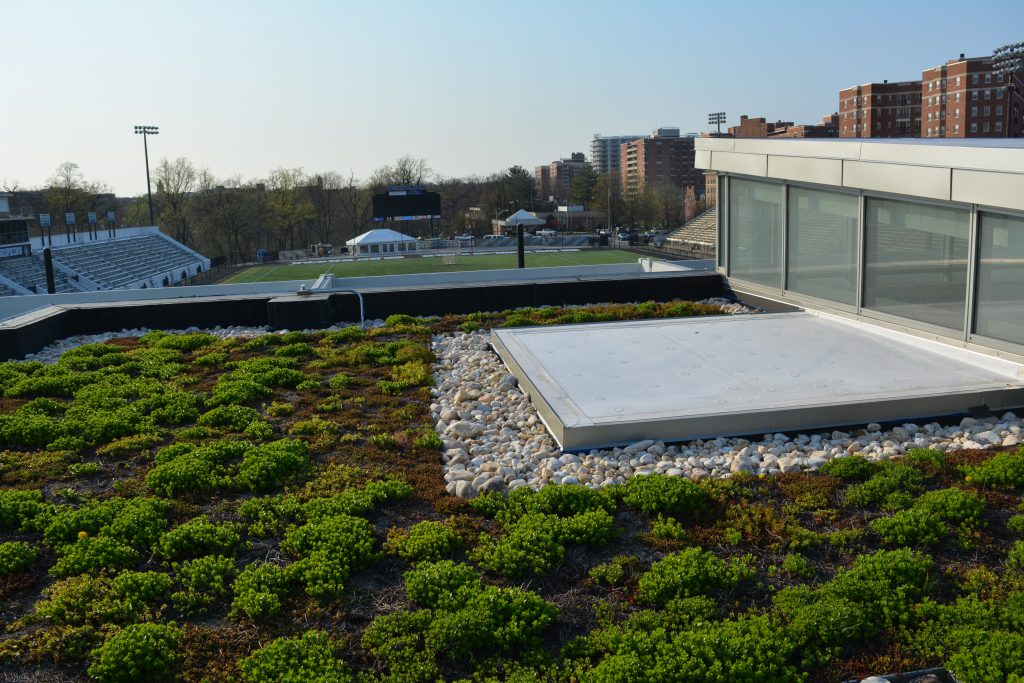 Cordish Lacrosse Center Green Roof